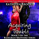 Acquiring Trouble: Bluegrass Brothers, Book 3 Audiobook by Kathleen Brooks Narrated by Eric G. Dove