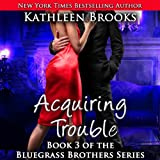 Acquiring Trouble: Bluegrass Brothers, Book 3