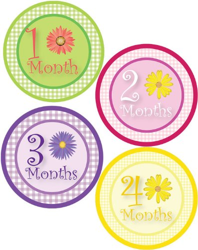 Baby Girl Flowers Monthly Onesie Sticker with Gingham Pattern - Waterproof and Durable - Includes 1-12 Month Stickers