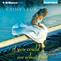 If You Could See What I See (       UNABRIDGED) by Cathy Lamb Narrated by Amy McFadden