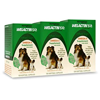 Set A Shopping Price Drop Alert For Welactin Canine Softgel Capsule, 120 Count, 3-Pack