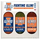 Illinois Fighting Illini NCAA Grilling Gift Set