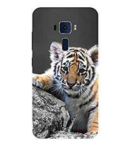 Evaluze cat Printed Back Cover for ASUS ZENFONE 3