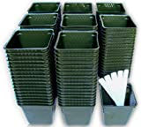 150 Plastic Nursery Plant Pots +5 Plant Labels, Green Seedling Containers