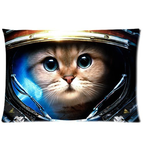 Anime Cat (20 X 30) Cotton & Polyster Bedding Pillowcase Zippered Pillow Cover (Two Sides) front-224169