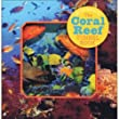 Coral Reef Tunnel Book: Take a Peek Under the Sea! (Take a Peek)