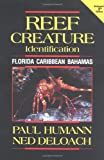 Reef Creature Identification: Florida Caribbean Bahamas