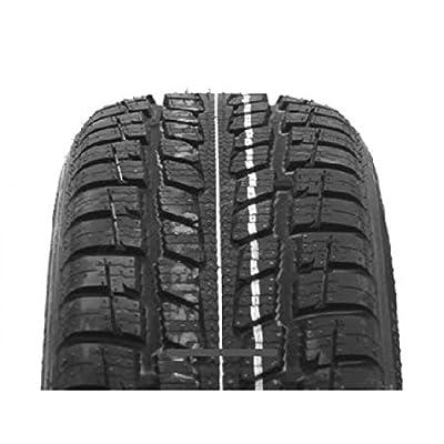 Ganzjahresreifen Roadstone N Priz 4S 205/60 R15 91H (C,C) von Roadstone auf Reifen Onlineshop