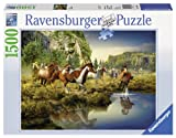 Ravensburger Wild Horses Jigsaw Puzzle (...