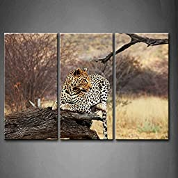 Modern Home Decoration painting 3 Panel Wall Art Leopard Seat On Dry Wood At Grassland The Picture Print On Canvas Animal Pictures piece