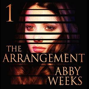 The Arrangement 1 Audiobook