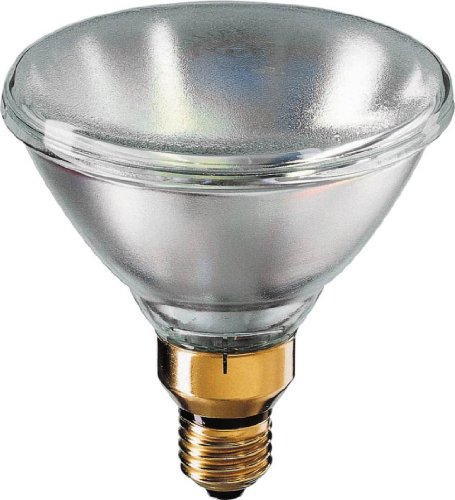 Philips 374322 250-Watt Par38 Krypton Flood Light Bulb