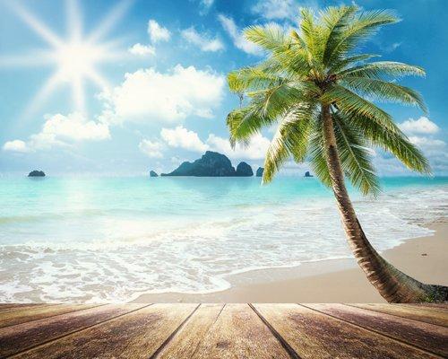 NIVIUS PHOTO® 150*300cm Sonnenschein Meer Meer Wasser Fotografie Hintergrund Vinyl Fotostudio Neugeborene Fotografie Hintergrund D-9600