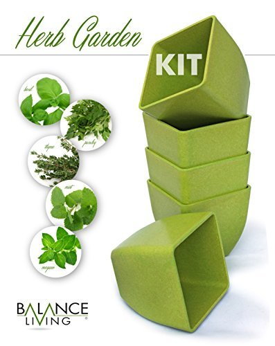 Balance Living® Herb Seeds Growing Kit - Set of 5 pots and organic soil