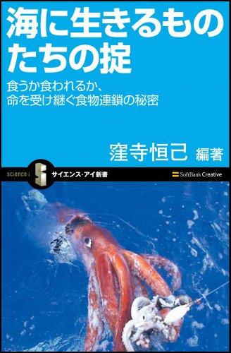 海に生きるものたちの掟 食うか食われるか、命を受け継ぐ食物連鎖の秘密
