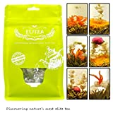 Elitea® 12 Pieces Premium Grade Jasmine Blossom Blooming Flowering Flower Tea Balls (Assorted 6 Blooming Styles)