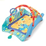 Bright Starts Babys Play Place
