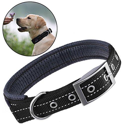 Collare Cane, PETBABA 2.5cm / 1 Pollice Larghezza Imbottita Riflettenti Regolabile Nylon Colletto per Cani Nero