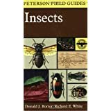 A Field Guide to Insects: America North of Mexico ~ Donald Joyce Borror