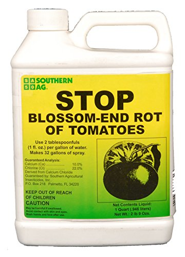 stop-blossom-end-rot-of-tomatoes-solves-calcium-deficiency-sa-quart-hj7-545-mki94-g1553393