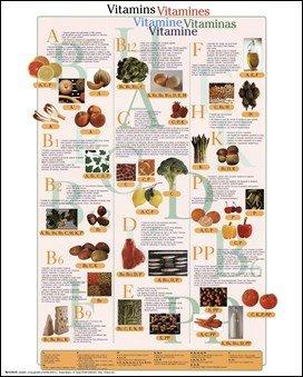 Vitamins Art Poster Print Unknown 16X20