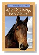 Why Do Horses Have Manes?