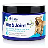 Best Value Glucosamine for Dogs with Chondroitin MSM & Organic Coral Calcium - Natural Dog Supplements for Joints - Safe & Effective Arthritis Pain Relief for Dogs - Improves Mobility & Joint Health