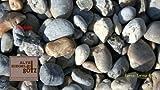 Zierkies Flusskiesel Bunt 32 - 50 mm a 25 kg
