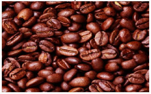 5Lb Sumatra Gayo Mountain Mandheling Freshly Roasted Direct Trade Coffee (Medium Whole Bean)
