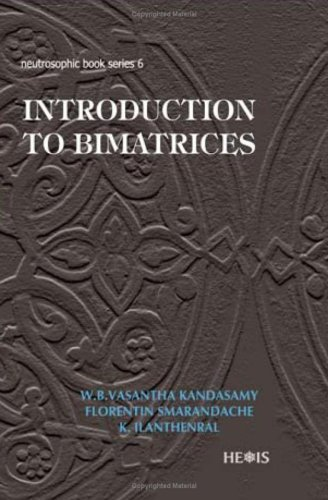 Introduction to Bimatrices