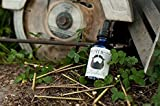 Dream Beard - All Natural Hand Crafted Beard Oil - Carpenter - 30ml