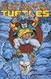 img - for Teenage Mutant Ninja Turtles Vol1 Issue 48 Shades of Grey Part 1 June 1992 book / textbook / text book