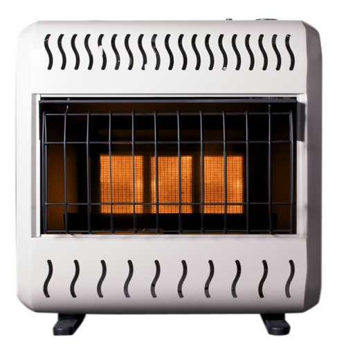 Sure Heat 16,000 BTU Infrared Dual Fuel Gas Space Heater with Thermostat and Blower