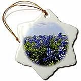 3dRose orn_94452_1 Bluebonnets, Freyburg, Texas US44 FVI0010 Franklin Viola Snowflake Ornament, Porcelain, 3-Inch