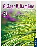 Image de Gräser und Bambus (Mein Garten): Gestalten Pflanzen Pflegen