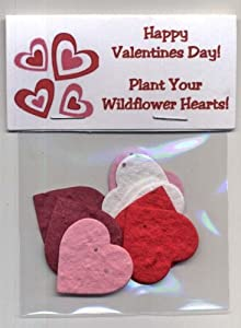 Set of 5 Plantable Valentine Heart Handouts