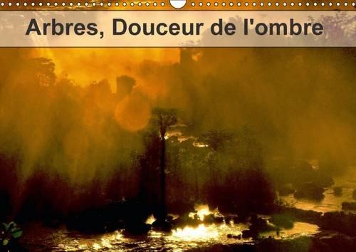 arbres-douceur-de-lombre-arbres-et-foret-du-monde-calendrier-mural-a3-horizontal-2017
