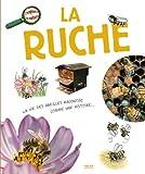 "Afficher ""La ruche"""