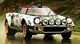 Lancia Stratos Alitalia Monte Carlo Rally XXL 1 Piece Glossy Poster Art Print!