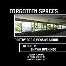 Forgotten Spaces: Poetry for a Pensive Mood (       UNABRIDGED) by Antonio Simon Jr., Steven Fonts, R. Perez de Pereda Narrated by Shawn Aveningo