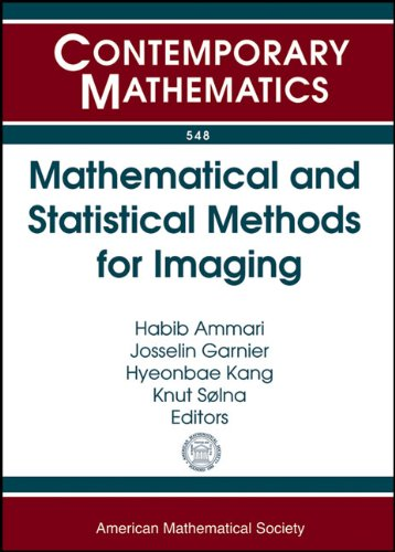 Mathematical and Statistical Methods for Imaging: Nims Thematic Workshop Mathematical and Statistical Methods for Imagin