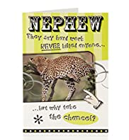Nephew Cheetah Birthday Card