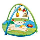 Small Foot Company 5560 Jamie Baby Gym