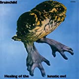 Brainchild - Healing Of The Lunatic Owl (Intl Import) [Japan LTD Mini LP CD] VSCD-6046