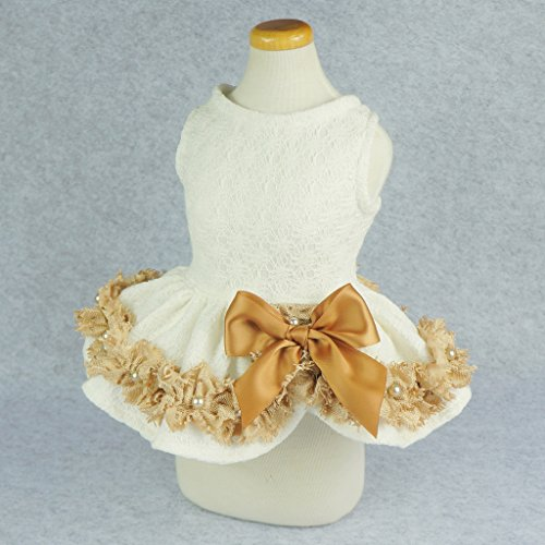 Fitwarm Elegant Lace Pet Clothes for Dog Dress Wedding Apparel Shirts, White, XXS