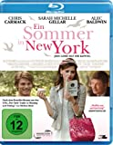 Ein Sommer in New York - Jede Liebe hat ihr Kapitel [Blu-ray]