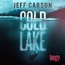 Cold Lake: David Wolf Series, Book 5 | Livre audio Auteur(s) : Jeff Carson Narrateur(s) : Sean Patrick Hopkins