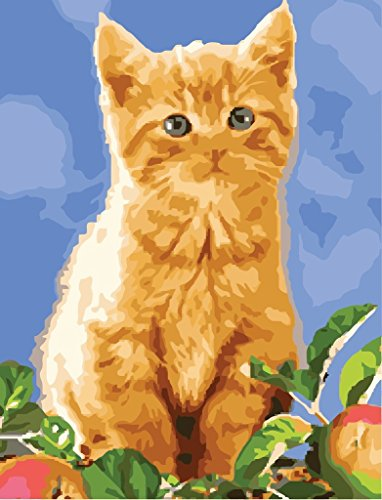 Paint by Number Kits - Cute Kitten 16*20 inches