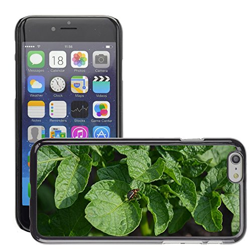 just-phone-cases-hot-style-cell-phone-pc-hard-case-cover-m00127445-beetle-potato-garden-summer-color