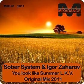 Sober System and Igor Zaharov Igor Zaharov and Sober System Unusual World